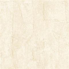 Piso Cerâmico Brilhante Borda Bold Harmony Bege 45x45cm - Cecafi